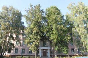 Узловский городской суд Тульской области 1